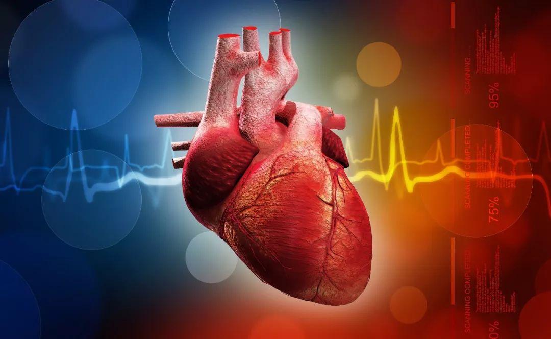 心血管疾病是中年男性专利?45岁后女性患上心血管疾病的凶险性更高